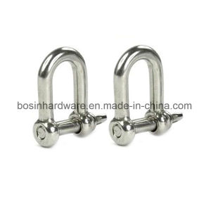 Stainless Steel D Shape Shackle pictures & photos