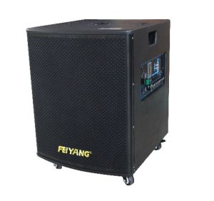 Feiyang/Temeisheng Big Power High-End Battery Speaker with UHF Microphone Gd12-03 pictures & photos