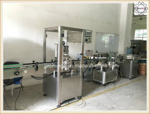 Liquid Paste Filling Capping Machinery pictures & photos