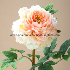 Factory Wholesale Fake Peony Artificial Flowers with Different Colors pictures & photos