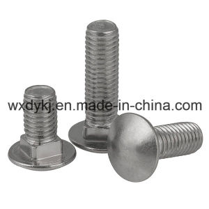 Stainless Steel 304 Carriage Bolts with Mushroom Head Square Neck pictures & photos