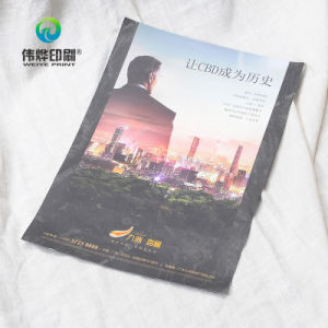 Real Estate Printing Promotional Paper Flyers pictures & photos