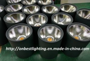 Hot Sales 12W LED Ceiling Light in IP65 pictures & photos