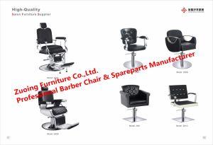 Salon Chair Sparepart S. S. Footrest pictures & photos