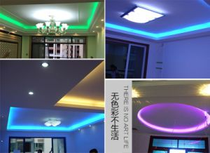 24V SMD 2835 Flexible LED Strip Light RGB pictures & photos