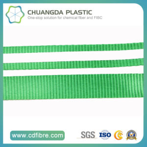 Customized Wholesale PP/Polypropylene Webbing in China pictures & photos