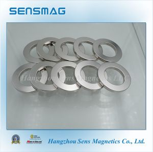 ISO9001 Cusomized Permanent NdFeB Ring Magnet for Motor, Generator pictures & photos