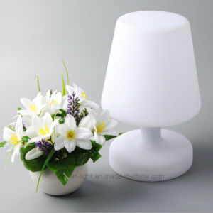 Illuminated Home Decor Table Lamp LED Mood Lamp pictures & photos