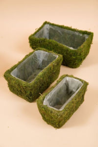 Moss Planter Rectangle Green Set of 3 pictures & photos