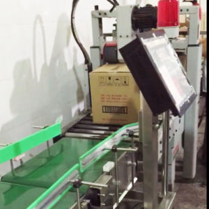 Online Checkweigher Dhcw-700*500 for Cartons/Boxes pictures & photos