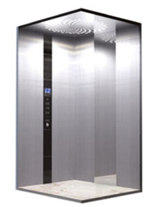 320kg Machine Roomless Home Lift Villa Passenger Elevator pictures & photos