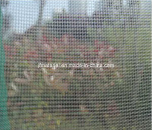 Green Color Fiberglass Insect Screen/ Insect Mesh/ Mosquito Screen/Fly Screen/ Window Screen pictures & photos