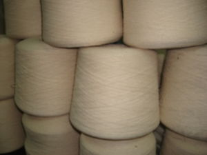 Eco-Friendly Organic Cotton Yarn- OE10s pictures & photos