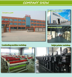 Wide Format Inkjet Printer for Polyester, Cotton, Linen etc pictures & photos