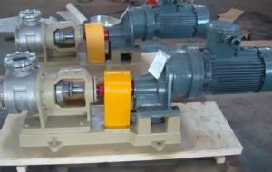 Nyp10/1.0 Stainless Steel High Viscosity Pump pictures & photos