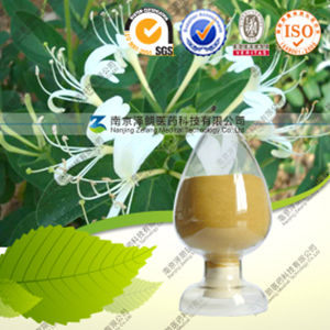 Health Care Product Honeysuchle Flowers Extract Chlorogenic Acid pictures & photos
