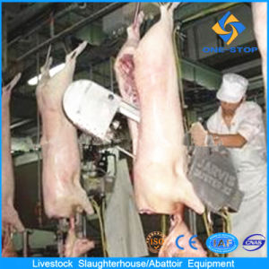 Pig Slaughtering Equipment with Layout Drafting pictures & photos
