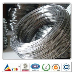 Electro Galvanized Iron Wire Chinese Factory