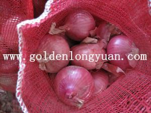 Red Onion Good Quality From Shandong pictures & photos