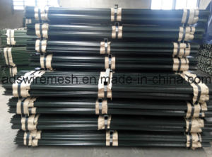 Rail Steel Punched T Posts pictures & photos