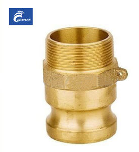 Brass Camlock Coupling -Type F pictures & photos