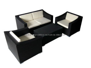 Leisure Rattan Garden Sofa Furniture (S0084)
