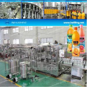 Hot Filling Juice Bottling Equipment (RCGGF)