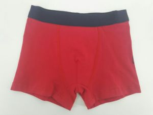 Water Print Cartoon Children Red Underwear Boy Boxer Short Boy Brief pictures & photos
