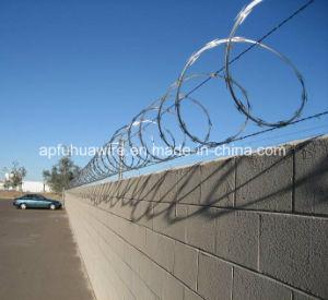 Single Coil Razor Barbed Wire, Concertina Razor Wire pictures & photos