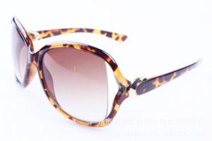 Hot Sale Authentic Designer Sunglasses with Colorful Elegant Working (XQ124)
