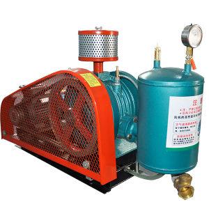 Easy Maintenance Vacuum Dehydration Rotary Blower