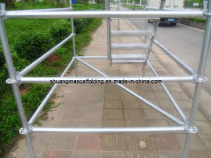 En12810 Construction Platform Steel Facade Scaffolding pictures & photos