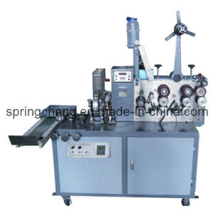 Automatic Straw/Toothpick Packing Machine pictures & photos