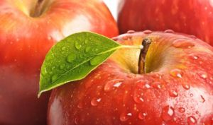 Anti-Oxidant Apple Extract Phlorizin & Phloretin pictures & photos