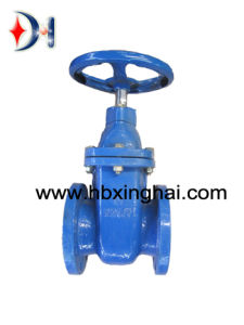 China Largest Valve Manufacturer Cast Iron Metal Seated Gate Valve BS5150