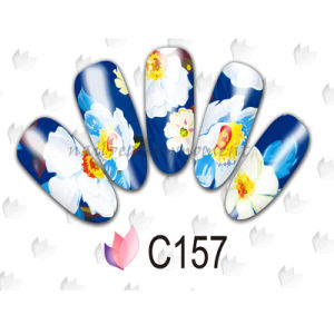 Nail Art Water Decals Transfer Sticker Manicure Beauty Accessories (NPP11) pictures & photos