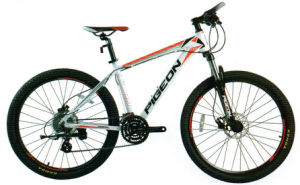 Hot Sale 24 Sp MTB Aluminum Mountain Bike (FP-MTB-A04) pictures & photos