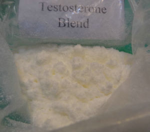 Steroids Blend Sustanon 250 with Good Price pictures & photos