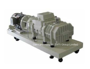 Hokaido Rse Series Environmental Protection Dry Screw Vacuum Pump (RSE80) pictures & photos
