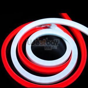 24V LED Neon Flex in Superbright 8 Colors