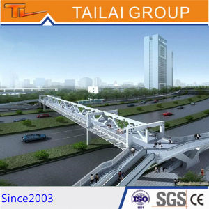 Designed Steel Bridge