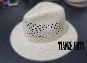 Fashion Hats Semi-Manufactured Traveler Hat Bodies pictures & photos