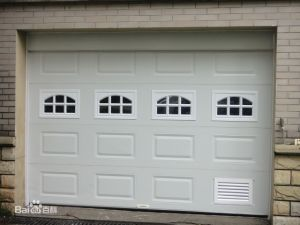 Plastic Garage Door Windows pictures & photos
