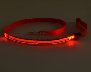 Fashionable Design Top Sale LED Flashing Collar for Dog Leashes pictures & photos