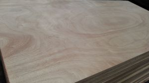 Linyi Plywood pictures & photos