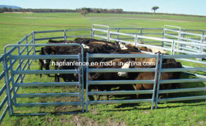 5 Bar Cattle Rail 1.6m High Cattle Panel pictures & photos