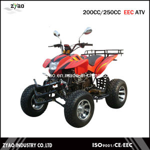 EEC 200cc/250cc Air Cooled ATV, Water Cooled Quad ATV with EEC Approval pictures & photos
