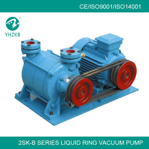 Two Stages Liquid Ring Vacuum Pump (2SK) pictures & photos
