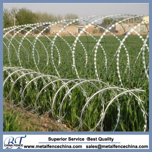 Bto-22 Barbed Razor Wire for Sale pictures & photos