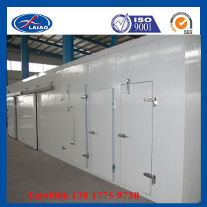 Mango Cold Storage Room pictures & photos